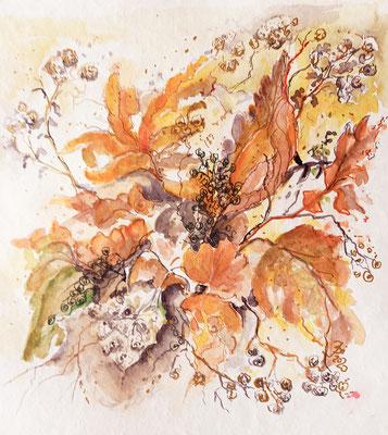 Blätter und Früchte, Aquarell, Stifte, 30 x 30 cm