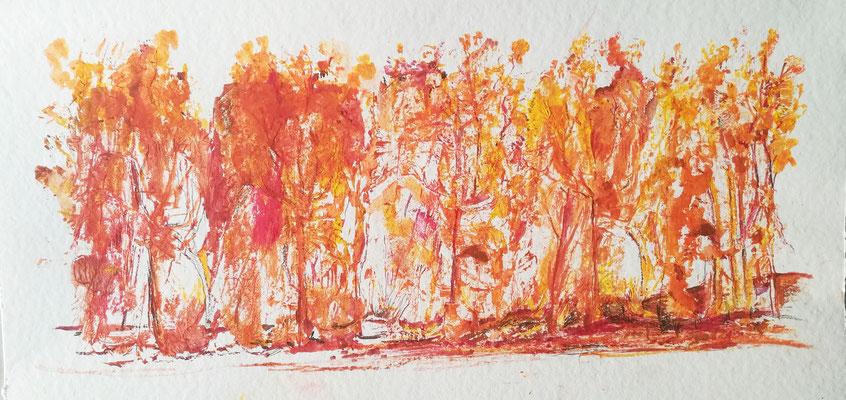 Herbstglühen II, Gelantinedruck, 60 x 30 cm