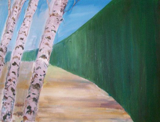 Birken - abstrahiert