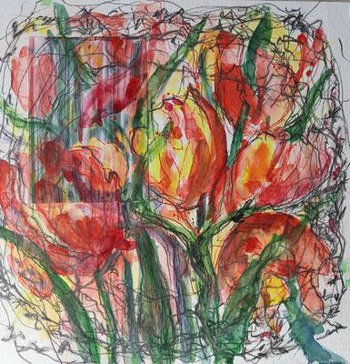 Tulpen im Nest,  Aquarell, Bleistift, 30 x 30 cm
