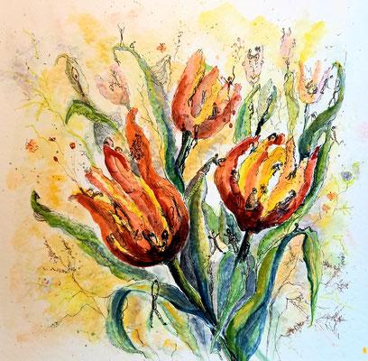 Lebendige Tulpen, Aquarell, Feder, 40 x 40 cm
