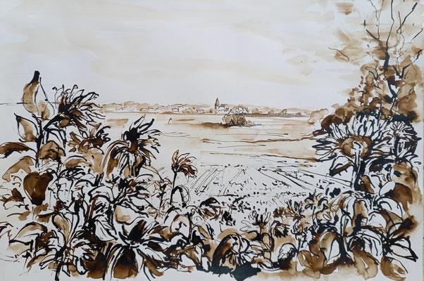 Blick auf Spreenhagen, Rohrfeder, laviert, 40 x 30 cm