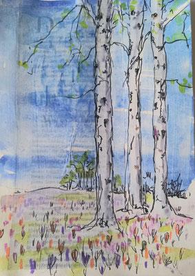 Krokuswiese Aquarell, Stifte auf Collage, 20 x 30 cm