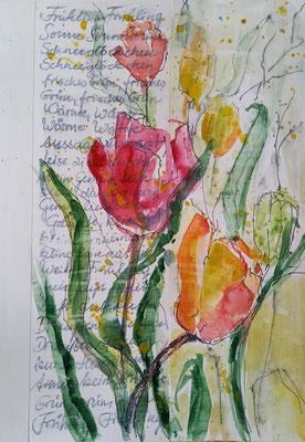 Tulpe, Aquarell, Stifte auf Collage, 20 x 30 cm