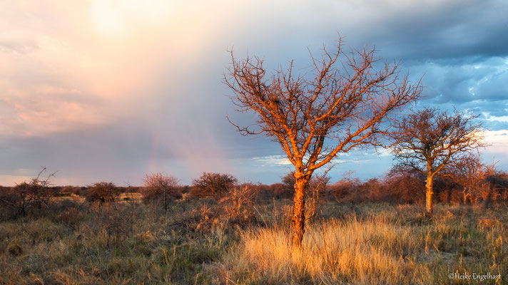 Gewitterstimmung in Namibia