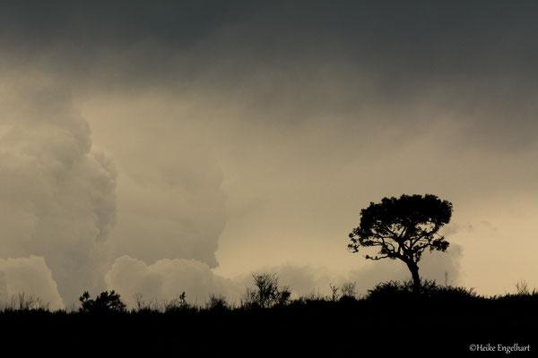 Gewitter und Wolken ergeben oft eine schöne Lichtstimmung.
