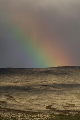 Der einzige Sonnenuntergang in Norwegen, der uns dieses Jahr vergönnt war. Und dazu diese wunderschöne Regenbogensituation. Das ganze mit meinem Teleobjektiv festgehalten. Trotz eiskalt wehendem Wind ein einmaliges Erlebnis.