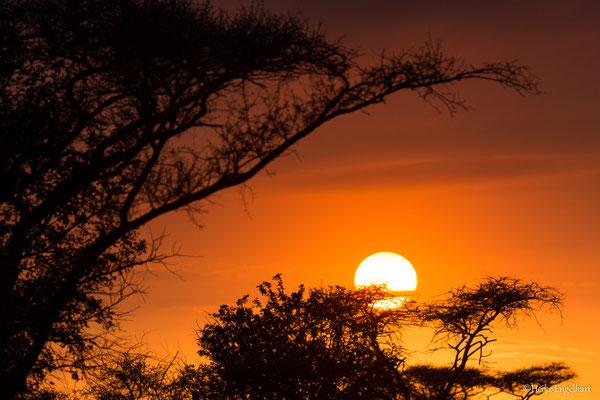 Ein typischer afrikanischer Sonnenaufgang - wunderschön und ganz schnell vorbei.
