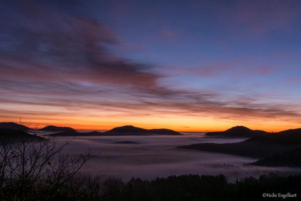 Morgenstimmung im Pfälzer Wald