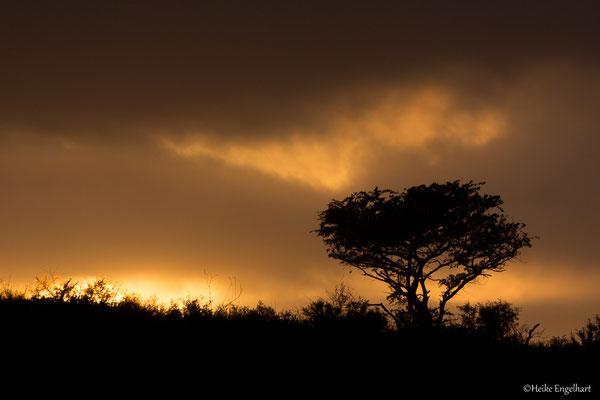 Schnell noch ein letztes Bild und zurück zum Camp, das zum Sonnenuntergang schließt.