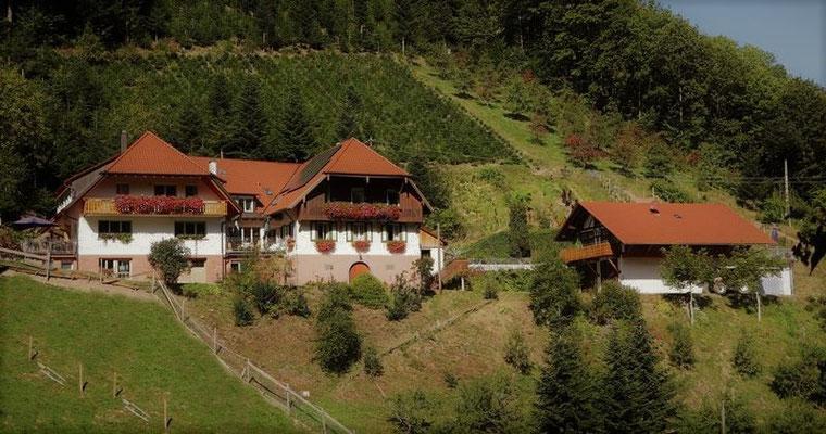 Halterhof
