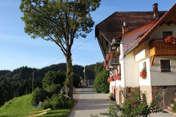 Ferienhof Hölzleberg - Ferienwohnung im Schwarzwald mit Pool, mit Schwimmbad, Ferienwohnung Schwarzwald von privat in Durbach - Hof Hölzleberg Ansicht Zufahrt