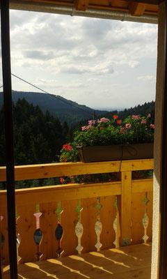 Ferienhof Hölzleberg - Ferienwohnung im Schwarzwald mit Pool, mit Schwimmbad, Ferienwohnung Schwarzwald von privat in Durbach - https://www.hoelzleberg.de - Aussicht Balkon