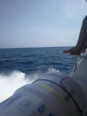Speedboat back to bali
