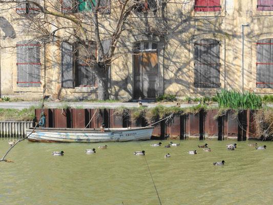 Bei der Schleuse Mandirac - Canal de la Robine