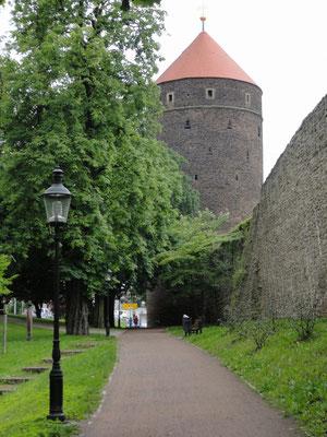 Freiberg - Donatsturm