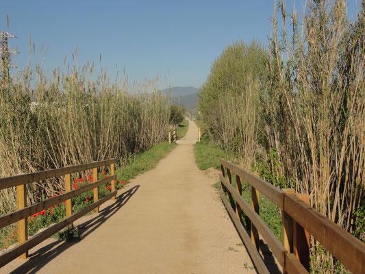 Bescano - Via Verde