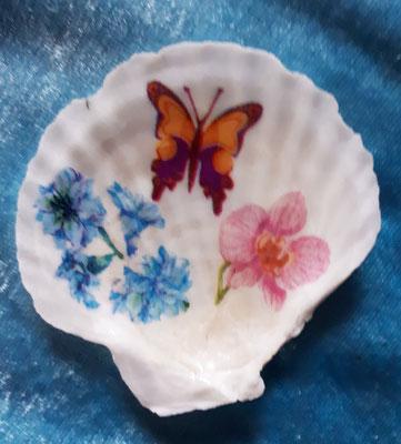 Venusmuschel/ Serviettentechnik Schmetterling