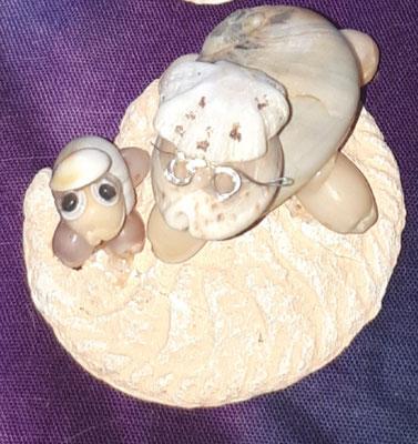 Muschel Schildkröte mit Baby