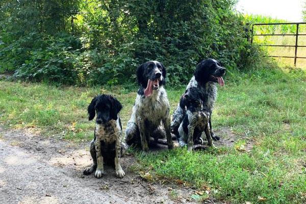 Elva, Buster, Ellie & Arven