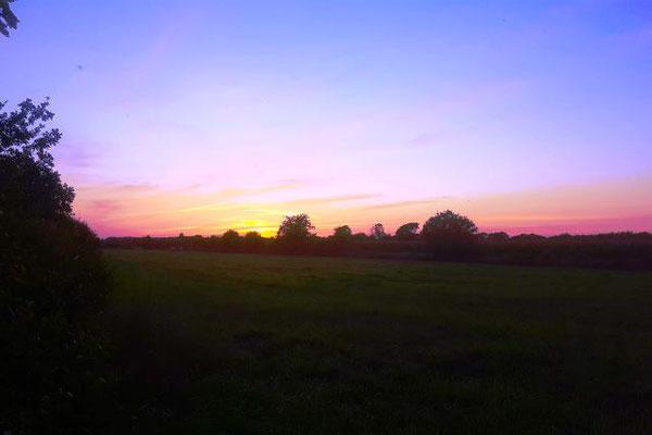 Ein schöner Abend im Fockbeker Revier