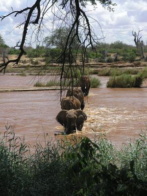 Tsavo East Nationalpark