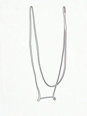 Wurf 3, 2010, Inkjetprint, 42 x 59,4 cm