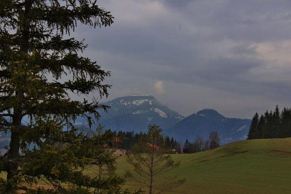 Dürnbergermoor, Österreich/Austria; Blick auf Pleschaitz/view to Pleschaitz
