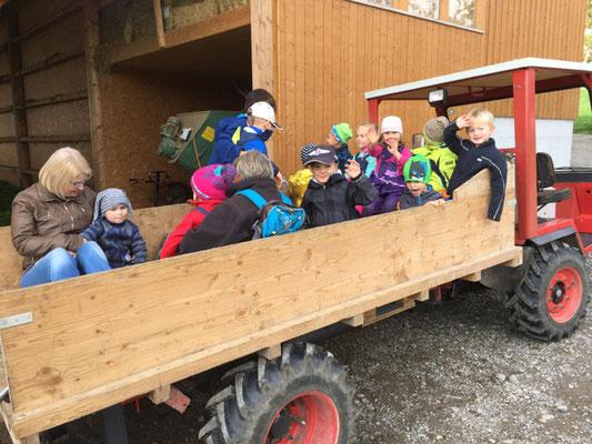Den Trester durften wir den Kühen auf dem Bauernhof bringen und Daniel Boppart hat uns mit dem Traktor abgeholt.