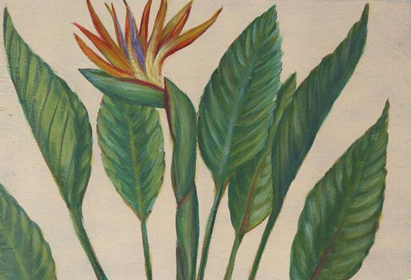 Paradiesvogelblume, 2021, 33,5 x 22,8, Acryl auf Bauholz
