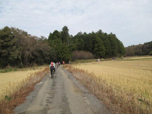 秋色の田園の中を行く