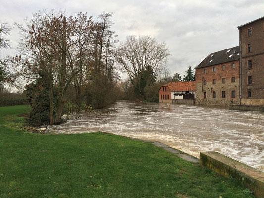 Hochwasser am Rückinger Wehr März 2016