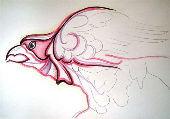 Greifvogel 3 I Pastellkreide auf Karton - 100 x 75 cm