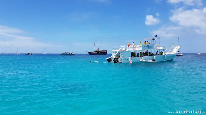 Barbados Carlisle Bay - Schnorcheltour für 20 US-Dollar p.P.