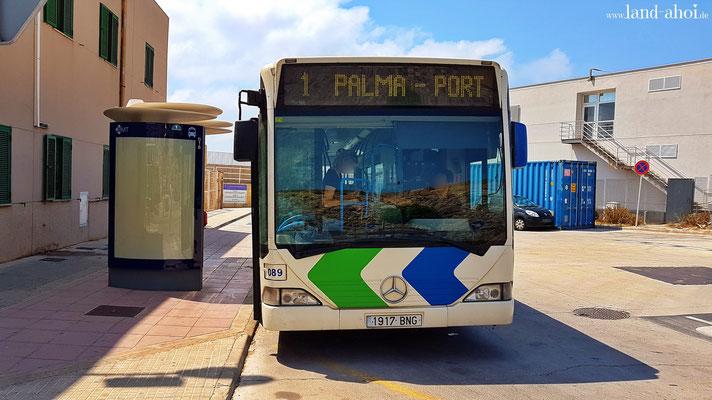 Bus der Linie 1