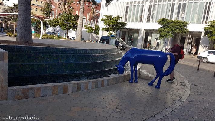 Aruba Oranjestad Pferde Statue