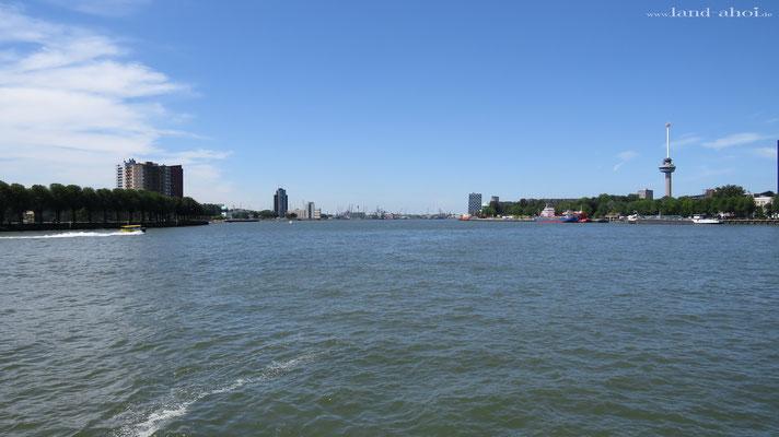 Rotterdam mit Euromast