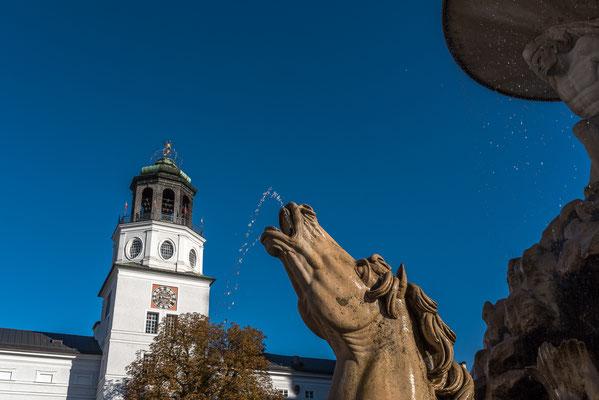 Wasserspeiendes Pferd Springbrunnen am Residenzplatz