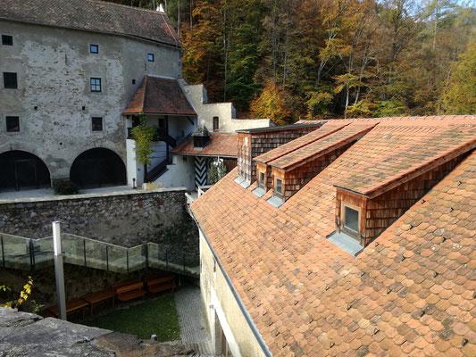 Burghof und Dachlandschaft