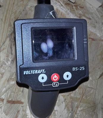 Endoskop-Cam