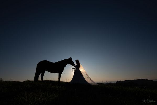 Hochzeit, Afterwedding, Braut mit Pferd
