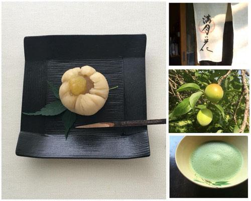 京都の青谷の梅とわらびもちを使った和菓子