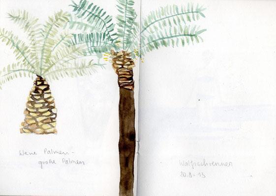 Palmis