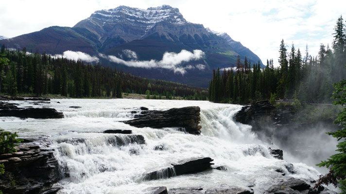 Athabasca Falls am Icefield Parkway