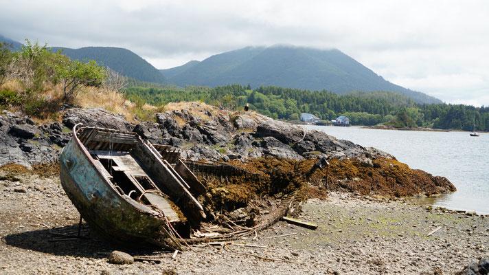 Schiffswrack bei unserer Unterkunft, Seeadler auf dem Hügel