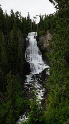 Alexander Falls bei Whistler