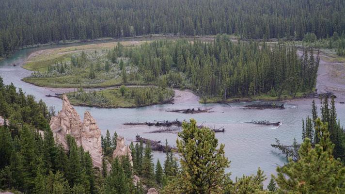 Hoodoos - eine Felsformation bei Banff
