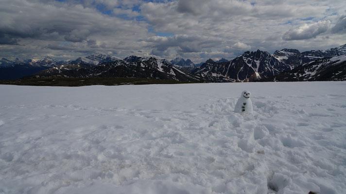 Aussicht vom Whistlers Peak (bei Jasper)