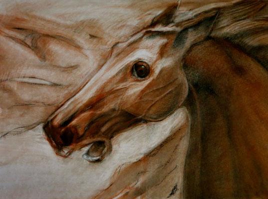 Titel: Pferdeflüsterer, Maße: 78x58 cm, Jahr: 2010