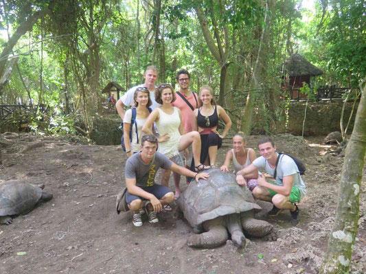Gruppenbild mit Riesenschildkröte